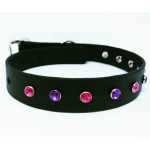 Biothane Buckle Collar - 2 Colours