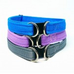 Dual Purpose Breakaway Safety Collar