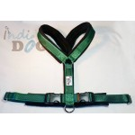 20mm Verso Harness